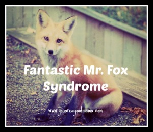 CC image of fox courtesy of digitalprimate on Flickr